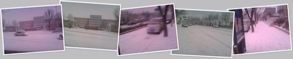 查看 雪中陈毅中学